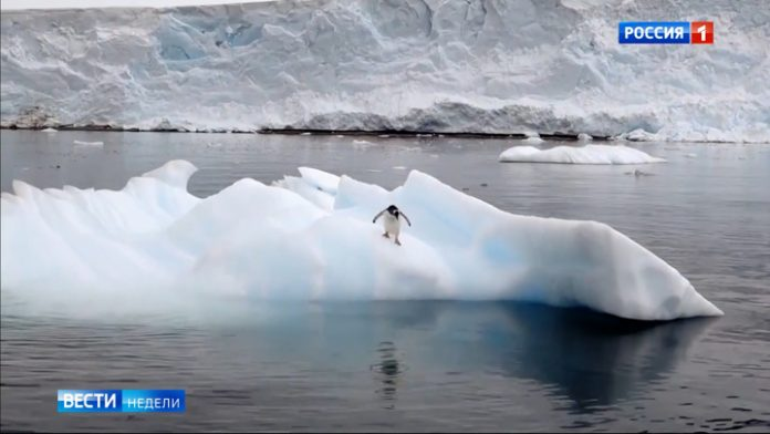 Antarctica does not forgive mistakes