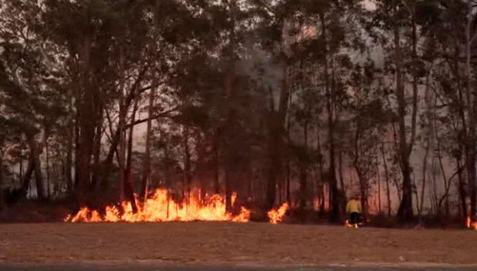 Australia counts the damage from forest fires