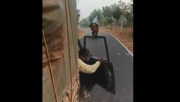 Enraged elephant attacked a truck in the Indian reserve. Video