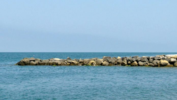 The experts have checked the quality of the marine waters off the coast of Sochi