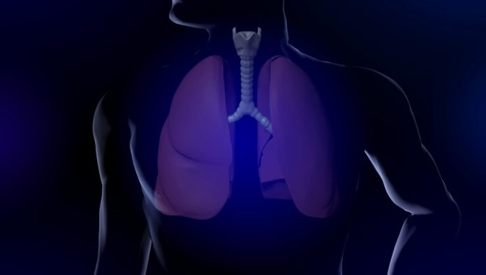 The lungs of smokers magically regenerate after quitting tobacco