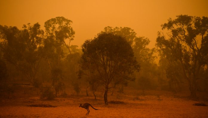 The smoke from the Australian wildfires has reached Latin America