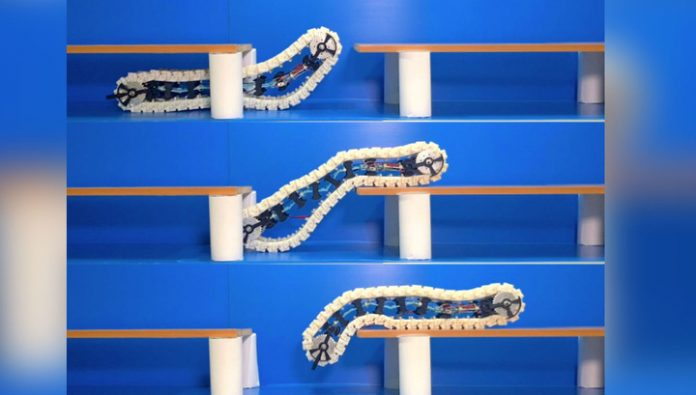 A unique robot-caterpillar crawls and jumps obstacles