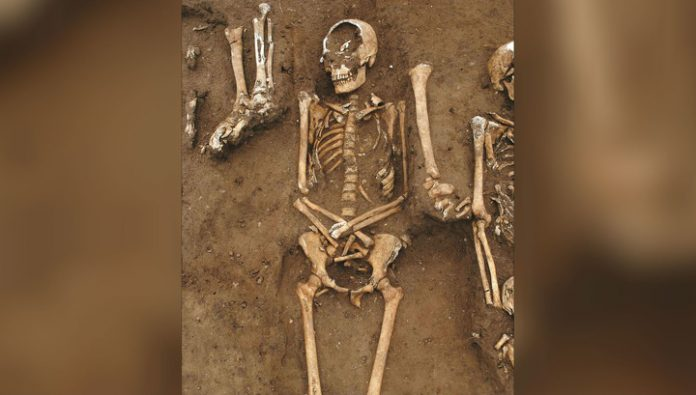 Hospital last: studied medieval fraternal grave of victims of the Black death