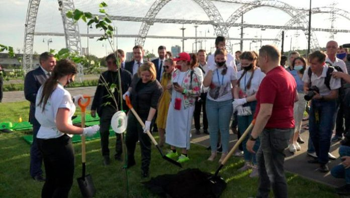 At Mamaev Kurgan in Volgograd laid lime alley in the framework of