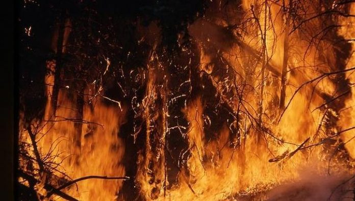 In Buryatia eliminated forest fires in five districts of the Republic