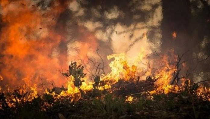 In Buryatia liquidated two large forest fire