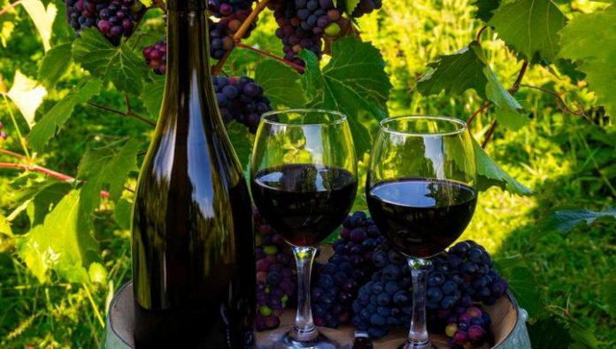 In Russia came into force the law on viticulture and winemaking