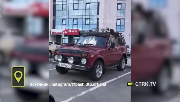 Wrong bees attacked a car in Ufa