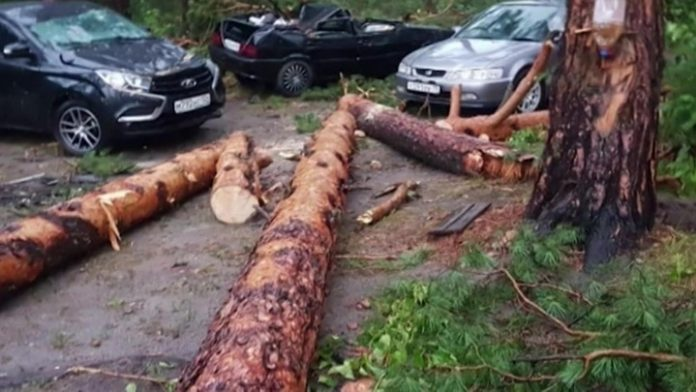 Fallen trees and smashed cars in the middle of a hurricane turned out to be a campground