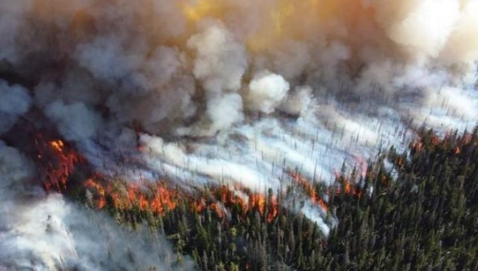 In Buryatia forest fire fighting by over 600 people